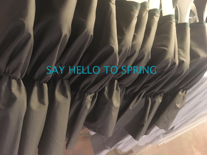 SAY HELLO TO SPRING