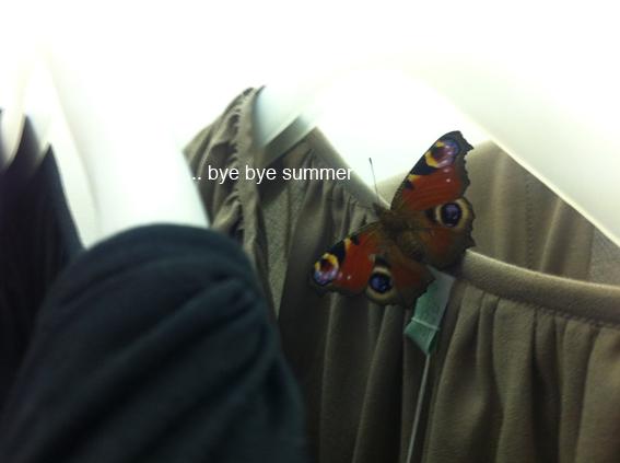 ...bye bye summer